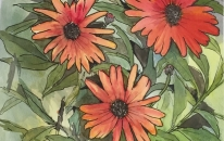 Flowers 1<br>SOLD