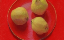 12. Red.Plate.Quinces<br>SOLD