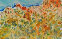 16. Arkaroola Landscape<br>SOLD