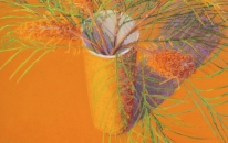 Orange, Vase, Banksia Spinosa #2